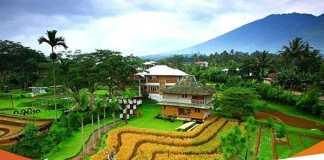 5 Alasan Kenapa Harus Mengunjungi Malasari Desa Wisata Bogor yang Tersohor