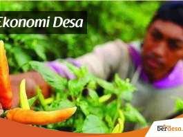 Pengertian Ekonomi Desa Dan Prinsip Pembangunan Ekonomi Desa