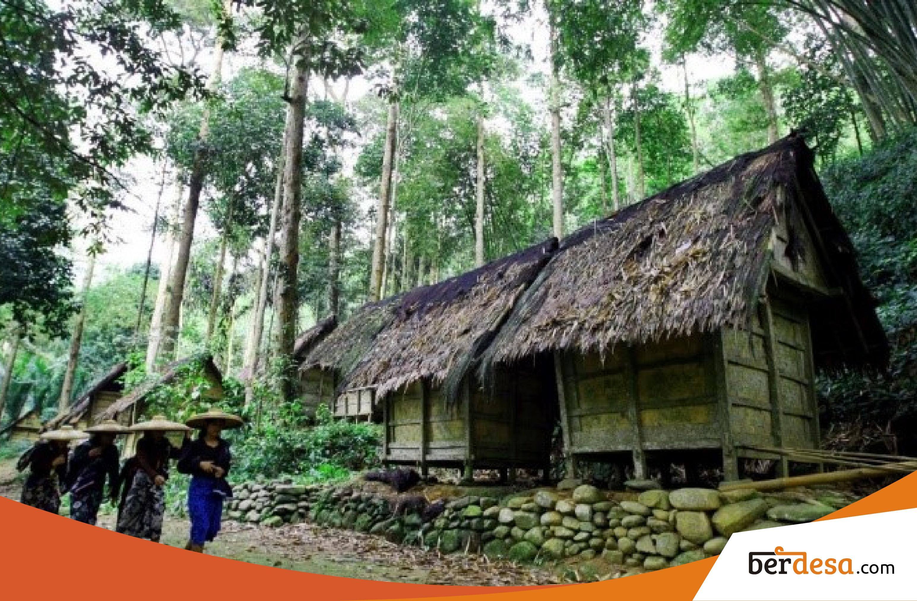 Penolakan Dana Desa Oleh Masyarakat Adat Baduy – Berdesa