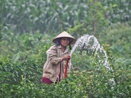Kebutuhan Air Desa