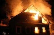 У США черепаха влаштувала пожежу в двох будинках