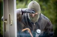 Поліція: за минулу добу було побито рекорд по кількості крадіжок
