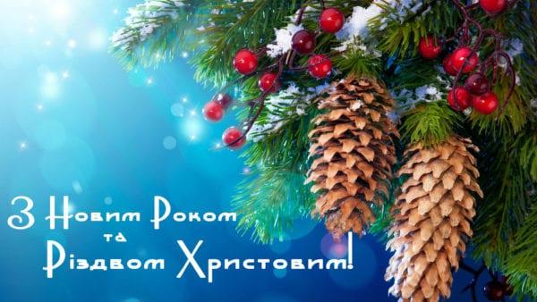Анжеліка Лабунська вітає мешканців Житомирщини з наступаючими святами