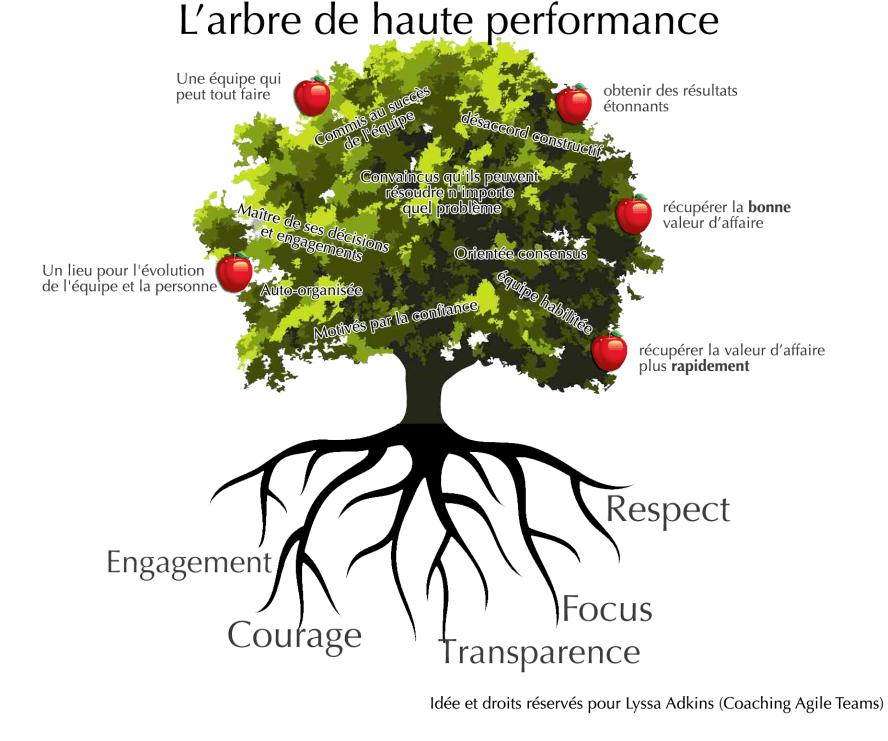 high-performance-tree-berejeb