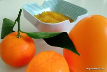 compote aux figues de barbarie - bergamote family (5)
