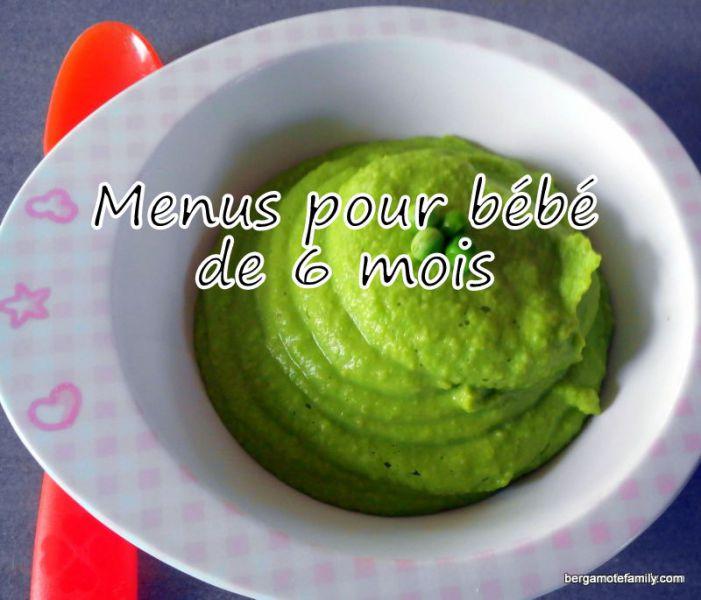 exemples de menus pour bebe de 6 mois