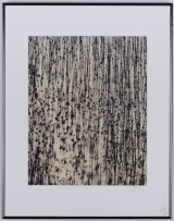 "<h5>""Tree Trunks & Reflections in Swamp"" by Owen Kanzler (1990)</h5><p>Approx. 16""x19""; Color photograph BMAS 1072</p>"