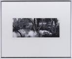 "<h5>""Loire Valley B."" by Nancy Ori (N/D)</h5><p>Approx. 6″x13″; Gelatin silver print BMAS 1004</p>"