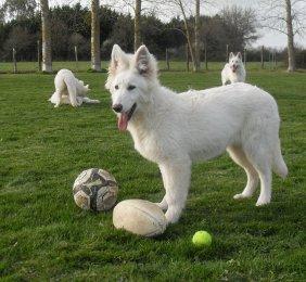 Jawad et ses ballons