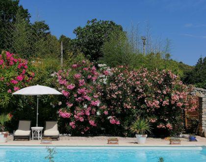 piscine fleurie
