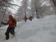 Schneeschuhwanderungen