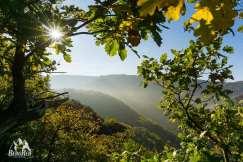 Herbstwanderung Wandern im Herbst
