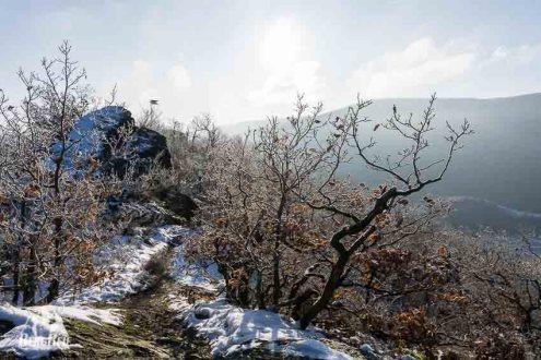 Winter Wandern im Ahrtal