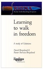 Learning to walk in freedom free ePUB
