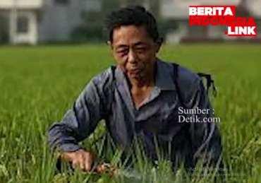 Sekolah Indonesia Harusnya Miliki Kurikulum Pertanian seperti di Australia