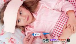 Mengapa Anak Usia Sekolah Sering Menderita Sakit Demam Berdarah?
