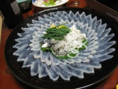 Dangerous Food - Fugu Sashimi
