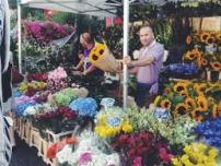 Columbia Road Flower Market 7