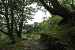 Lake District - Hiking 1