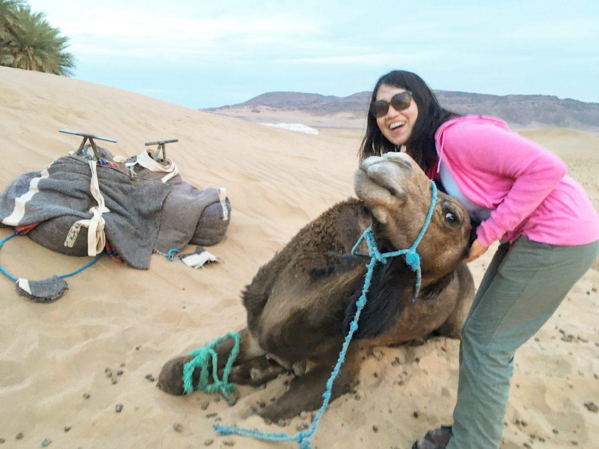 Experiencia del desierto del Sahara con Camel Safaries