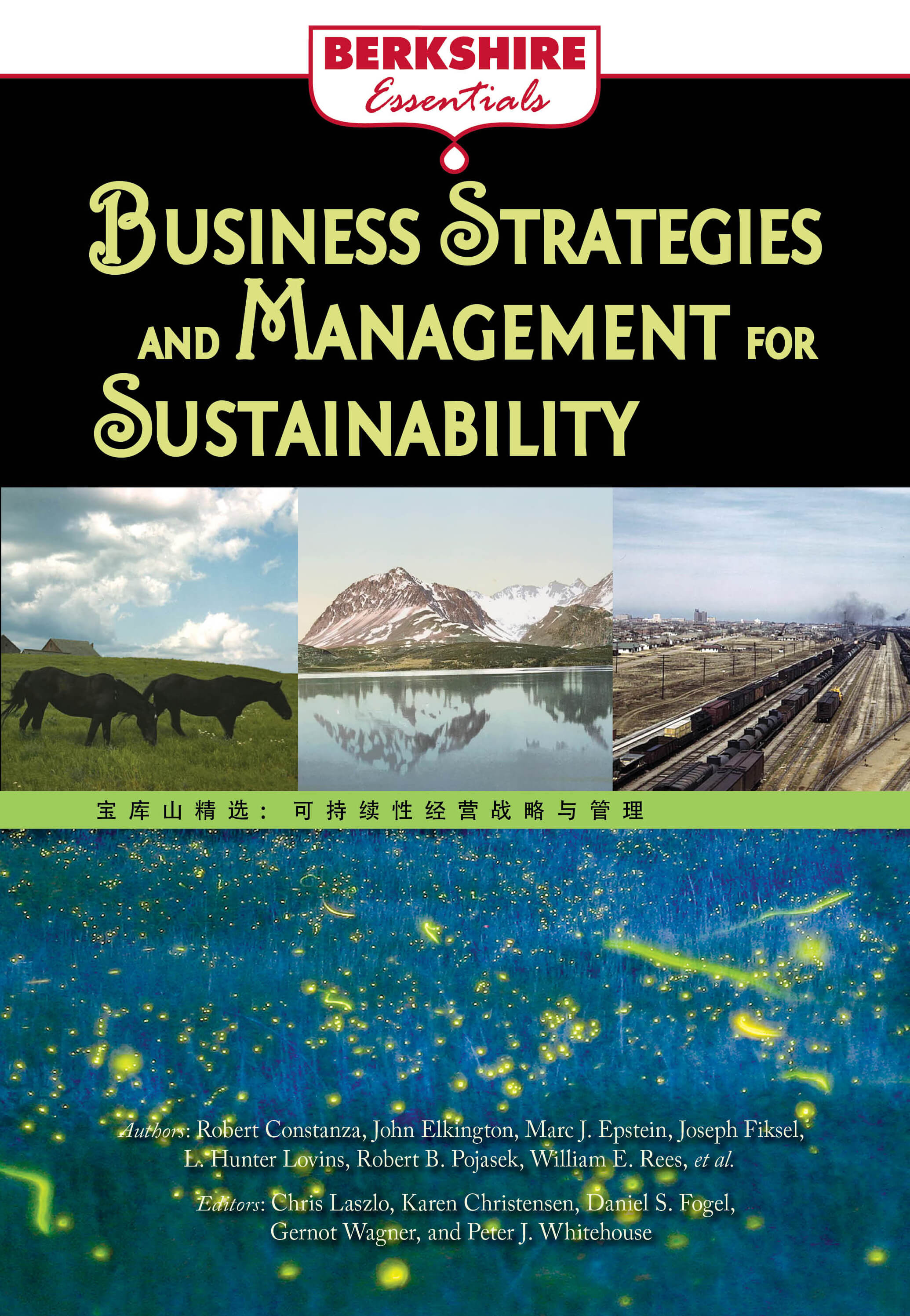 Business Strategies and Management for Sustainability: a Berkshire Essential