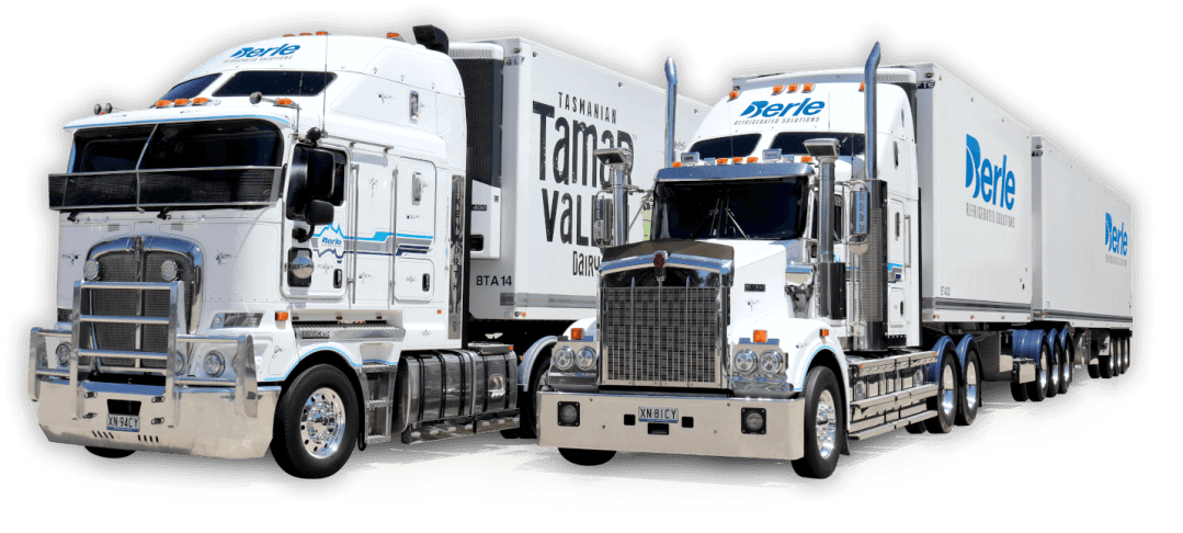 Refrigerated Transport and Cold Storage Services