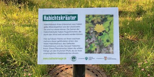 Ein Schild in einem grünen Bereich informiert über Habichtskraut