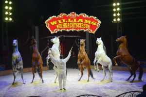 14.12. –  05.01.2020 Circus William in Berlin Hohenschönhausen Lichtenberg