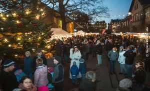 Wochenend- Weihnachtsmarkt in den Späth'schen Baumschulen 2019