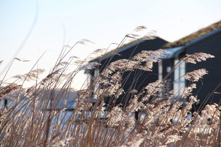 Wasserferienwelt Rügen: Ein Blick auf die Pfahlhäuser Pfarrhäuser