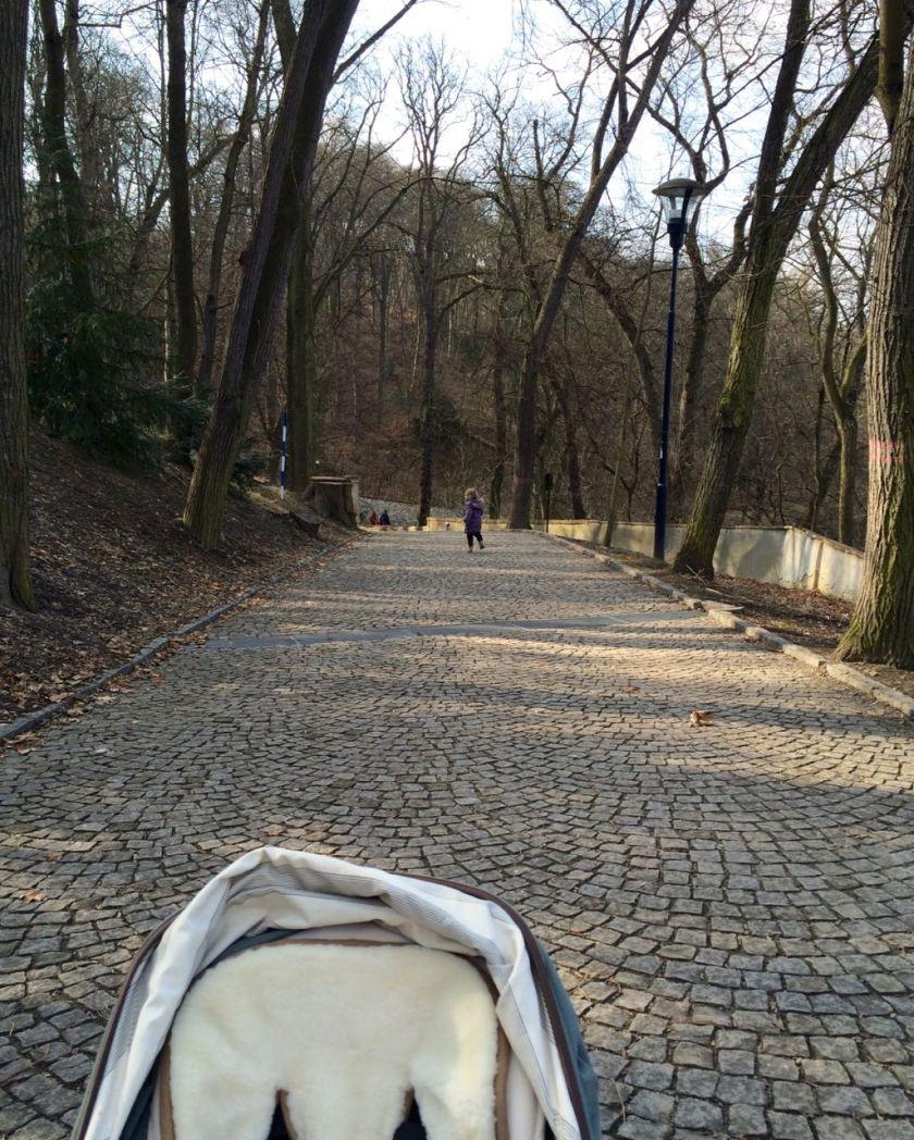 Mal keine Treppen, sondern breite (leicht holperige) Wege am Laurenziberg