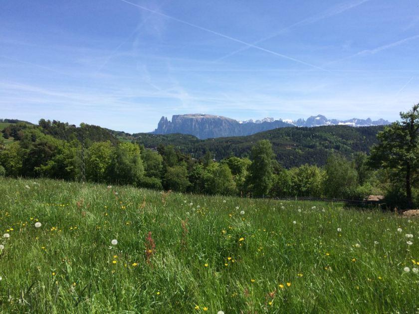 Faszinierend für eine Flachlandpföanze wie mich: Die Dolomiten