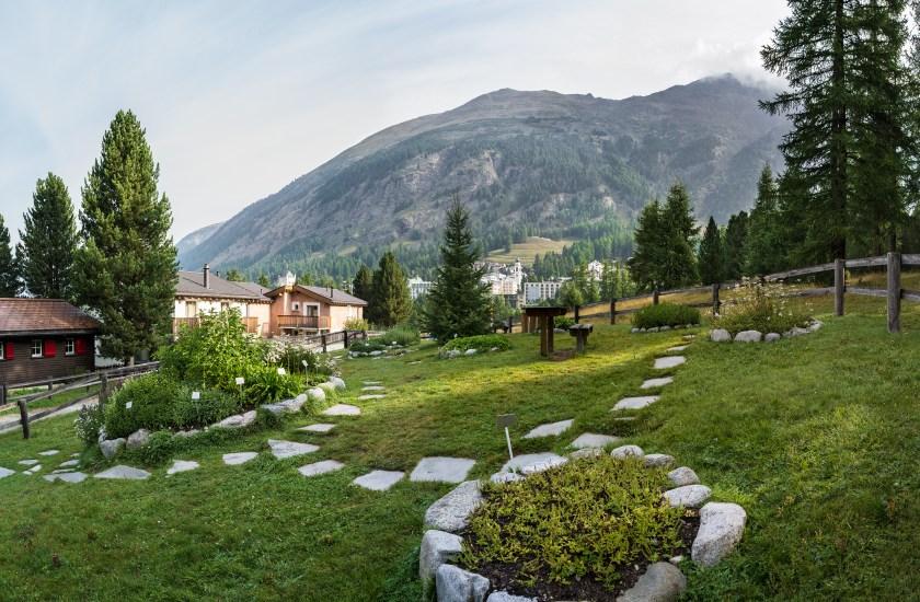 Schweiz: Kräuterschaugarten in Pontresina im Engadin (Foto: Ricola)