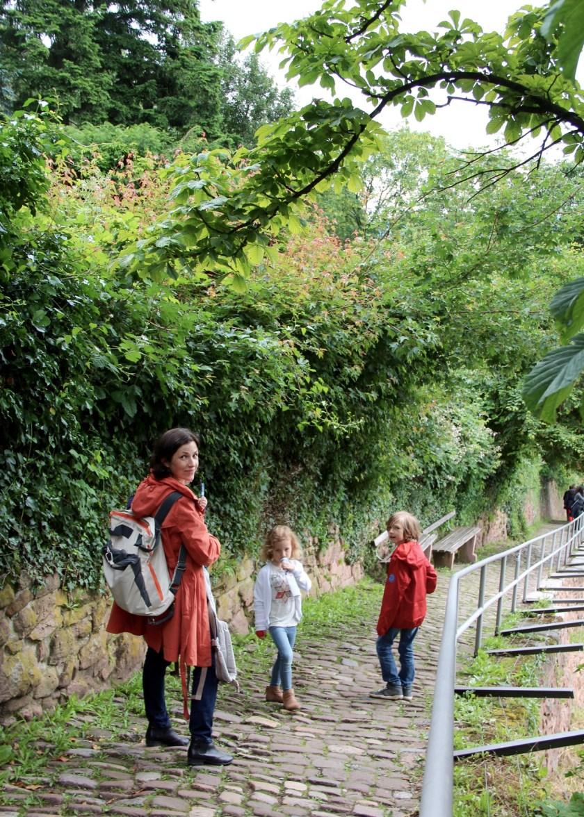 Der Heidelberger Schlangenweg: Manchmal haben wir die Idylle für uns allein. Manchmal drängeln Touristengruppen an uns vorbei.