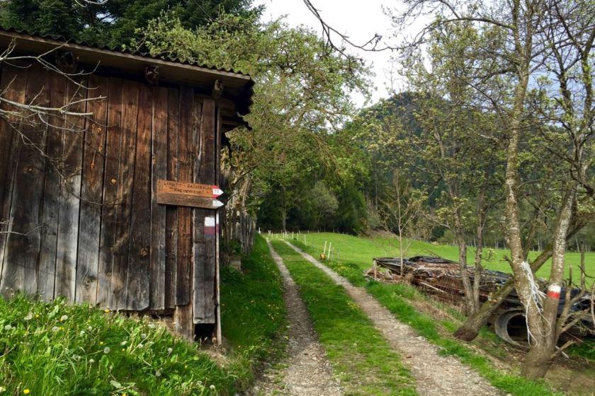 Südtirol: Jeder Weg lädt zum Wandern und Entdecken ein.
