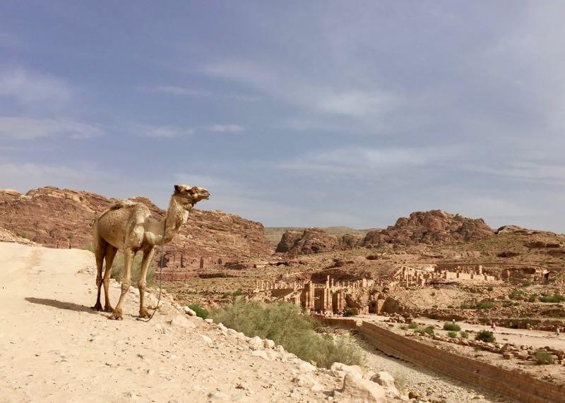Jordanien: Petra mit Kindern erleben. Nehmt Sonnenschutz und genügend Wasser mit.