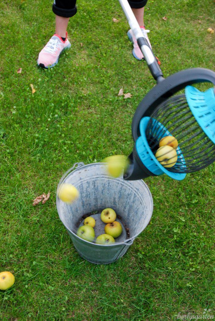 Das Obst lässt sich mit dem GARDENA Rollsammler einfach ausschütten