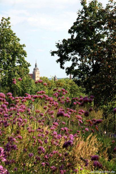 Blick auf Brandenburg