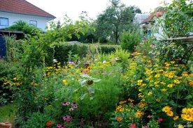 Bunter Sommergarten