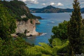 Südsee Feeling auf der Coromandel Peninsula: das Wasser türkis, die Felsen aus Kalksandstein hell und die Vegetation üppig grün