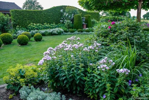 Das Staudenbeet am Haus ist in Pastelltönen gehalten. Und der Phlox macht klar, dass auch dieser Garten kein Irrtum ist ;-)