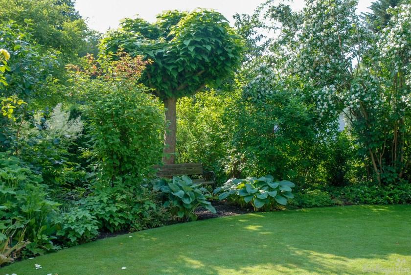 Der Garten direkt hinter dem Haus verströmt durch die große Rasenfläche und die Bepflanzung in verschiedenen Grüntönen eine ruhige Atmosphäre