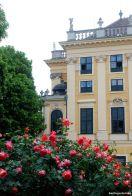 Das passt zusammen - Schloss und Rosen