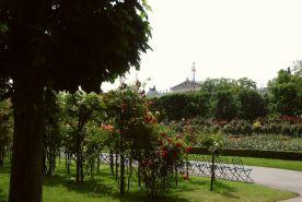 Der Rosengarten Richtung Parlament