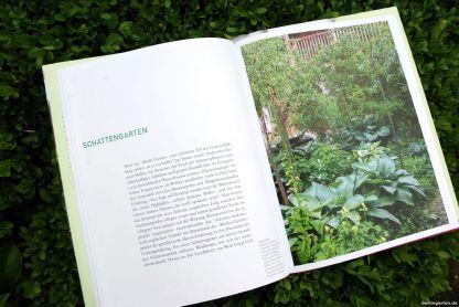 Der Schattengarten in grün-weiß