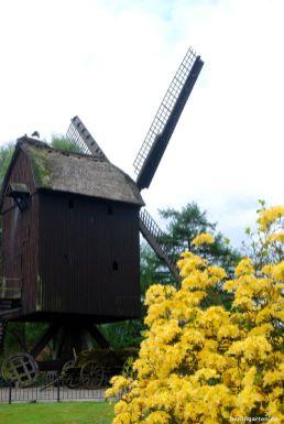 Eine alte, in den Vogelpark transferierte Windmühle