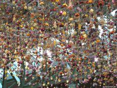 Für uns soll's bunte Blumen regnen