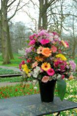 Floristik im Park