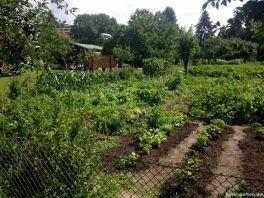 Gartenarbeitsschule