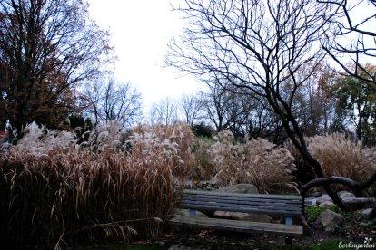 Geradezu meditativ: das Rauschen im Gräsergarten